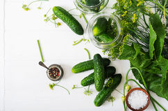 Замаринованная подготовка marinated огурцы, травы и соль стоковое изображение