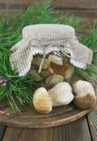 Замаринованные грибы стоковые изображения rf