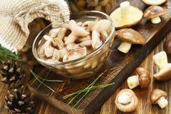 Замаринованные и свежие грибы стоковое изображение