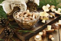 Замаринованные и свежие грибы стоковое фото