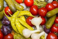 замаринованные овощи Стоковые Изображения RF