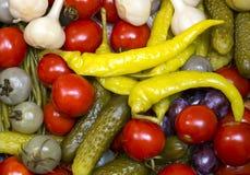 замаринованные овощи Стоковое фото RF