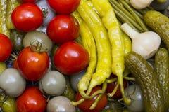 Замаринованные овощи, Стоковые Фотографии RF