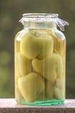 Замаринованные перцы с капустой Стоковая Фотография RF