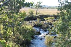 Замбия реки Kaombe стоковые фотографии rf