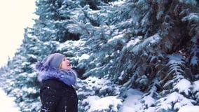 Замедленное движение, девушка в парке зимы касается снегу на дереве снег падает от ветвей дерева акции видеоматериалы