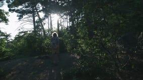 ЗАМЕДЛЕННОЕ ДВИЖЕНИЕ, КОНЕЦ ВВЕРХ: Деталь ботинок альпинизма hiker и горы непознаваемого авантюрного мужского hiker взбираясь акции видеоматериалы