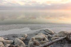 Замерзать воды в реке, образование льда, заход солнца, резервуар Ob, Сибирь стоковое фото