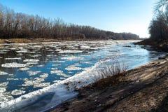 Замерзать на реке стоковая фотография rf