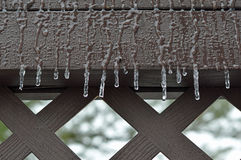 замерзающий дождь Стоковые Фото