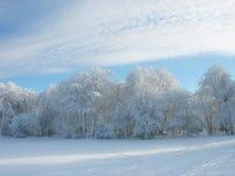 замерзая зима Стоковое фото RF