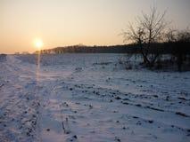 замерзая зима Стоковая Фотография