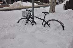 Замерзая колеса на Саппоро Стоковая Фотография RF