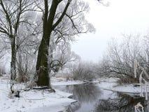 замерзая река Стоковая Фотография