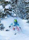 Замерзните движение freerider в глубоком снеге порошка Стоковое фото RF