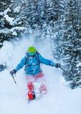 Замерзните движение freerider в глубоком снеге порошка Стоковое Изображение RF