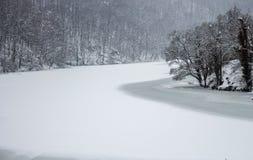Замерли озеро зимы с холодным лесом в Lillafured, Miskolc, Венгрии зима температуры России ландшафта 33c января ural Красивая при стоковое изображение