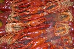 замерли рыбы craw, котор Стоковые Изображения RF