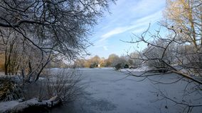 Замерли сцена зимы над прудом Hartley Mauditt к церков St Leonard, южным спускам национальному парку, Хемпширу, Великобритании стоковое изображение rf