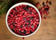 замерли ягоды, котор 1 жизнь все еще стоковое изображение rf