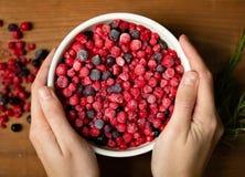 замерли ягоды, котор 1 жизнь все еще стоковое фото rf
