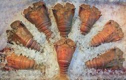 замерли crayfish, котор стоковое изображение