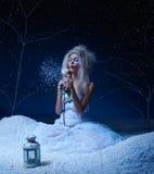замерли fairy, котор подняло Стоковые Изображения RF