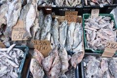 замерли рыбы, котор Стоковое Изображение
