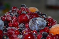 замерли ягоды, котор Стоковые Изображения