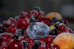 замерли ягоды, котор Стоковые Изображения RF