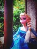 Замерли Elsa, который Стоковое фото RF