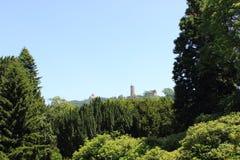 2 замка на холме леса, weinheim стоковое фото rf