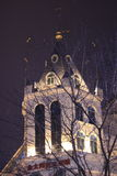 Замки с ветвями на ноче в зиме Стоковое Изображение