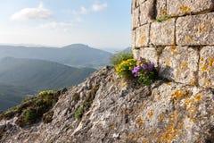 Замоки Peyrepertuse стоковые фото