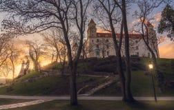 Замок Братиславы через деревья Стоковые Изображения RF