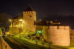 Замок Вадуц, Лихтенштейн Стоковое Изображение RF