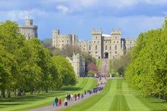 Замок Виндзора и большой парк, Англия Стоковые Изображения RF