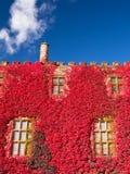 Замок вэльс Powis в цветах осени. Стоковая Фотография