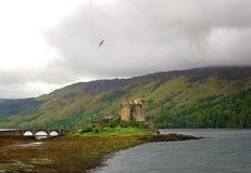 Замок в северо-западе Шотландии Стоковая Фотография RF