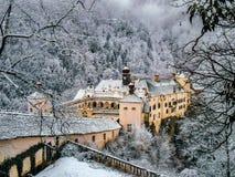 Замок в снежке Стоковое Фото