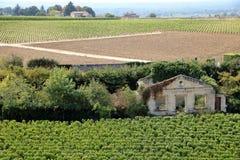 Замок и виноградник в emilion Святого Стоковые Фотографии RF