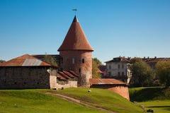 Замок Каунаса стоковое фото rf