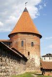 Замок Каунаса Стоковое Изображение