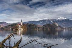 Замок кровоточенный озером и горный вид и упаденное дерево стоковые фото