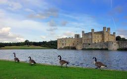 Замок Лидс, Великобритания, Англия Стоковые Фотографии RF
