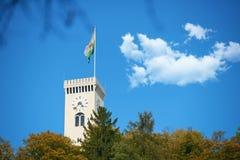Замок Любляны - Словения Стоковое фото RF