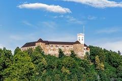 Замок Любляны стоковое фото rf