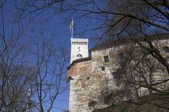 Замок Любляны Стоковые Изображения