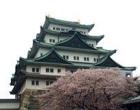 Замок Нагои стоковая фотография rf