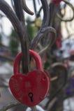 Замок на дереве влюбленности для Стоковые Фотографии RF